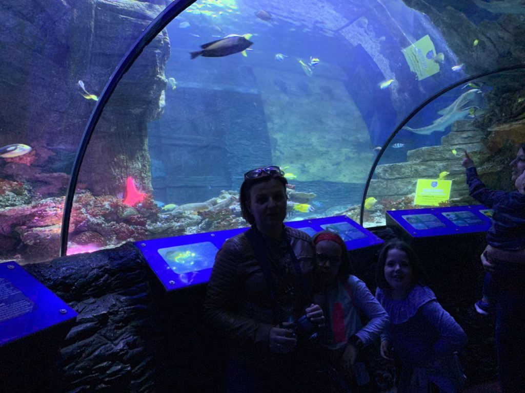 Sea life Minhen