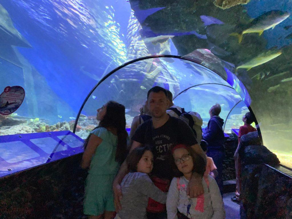 Tunel u Sea lifeu