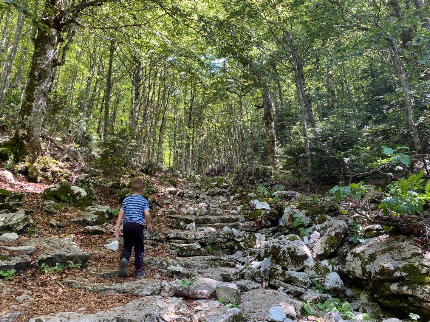 Staza do Trnovackog jezera