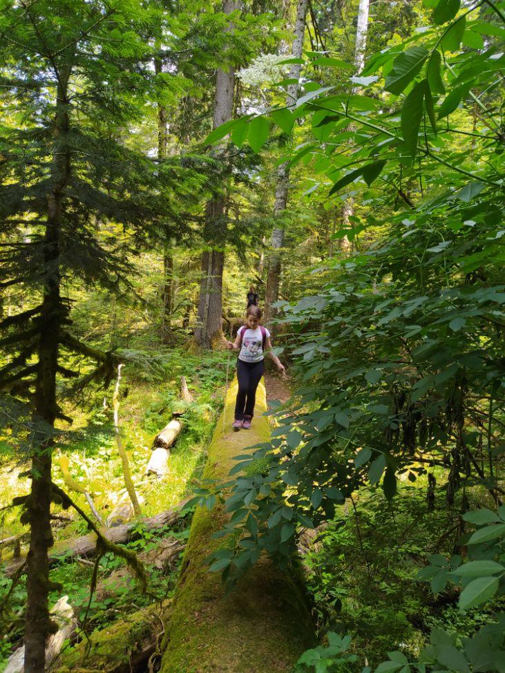 prašuma Perućica NP Sutjeska